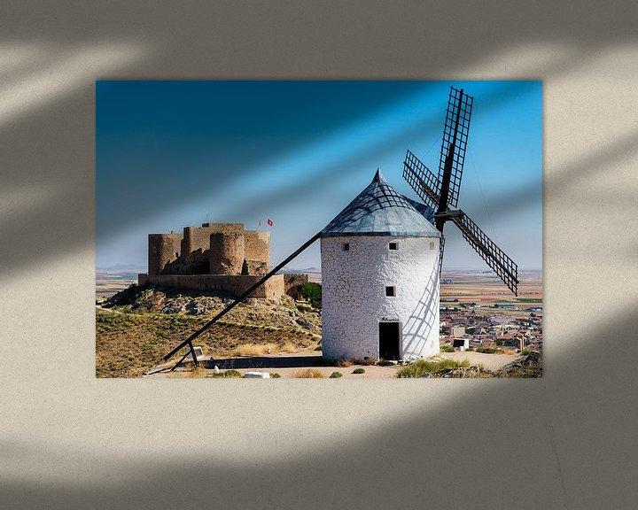 Sfeerimpressie: Windmolens en kasteel van Maerten Prins