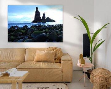 Ilhéus da Ribeira da Janela liggen voor de kust van Madeira. sur Jacques van der Neut