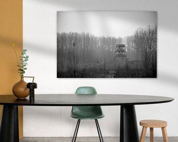 misty woods von joey migchels