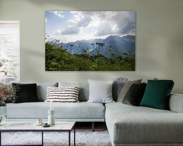 Alpine panorama with herbs