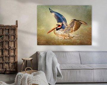 Fliegender Pelikan  von Diana van Tankeren