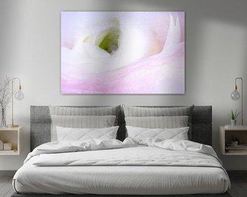 Frozen anemone van Monika Scheurer