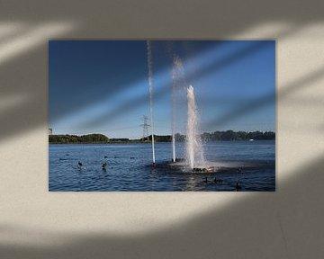 fontein in het weerwater