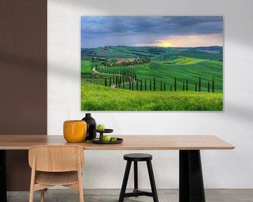 Rural property in Tuscany van Michael Valjak