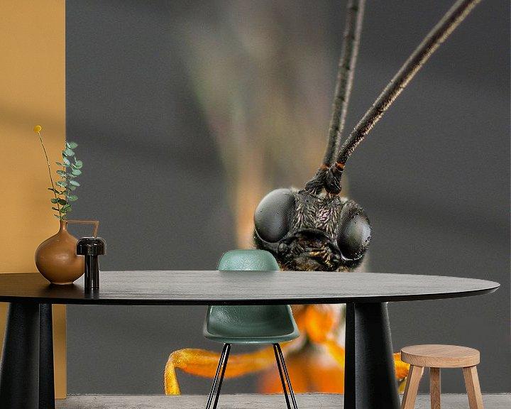Sfeerimpressie behang: Houtsluipwesp van Marlies Wolfert