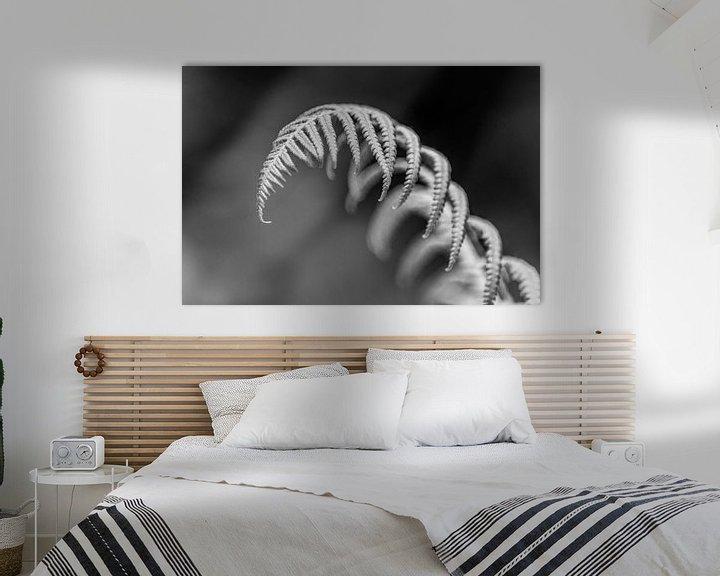 Sfeerimpressie: Varen in Zwart-Wit van Barbara Koppe