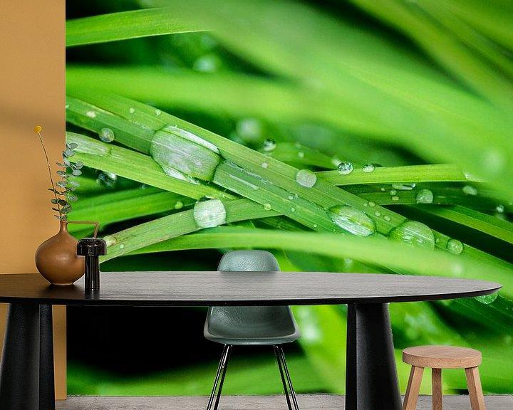 Sfeerimpressie behang: Waterdruppels op het gras van Barbara Koppe