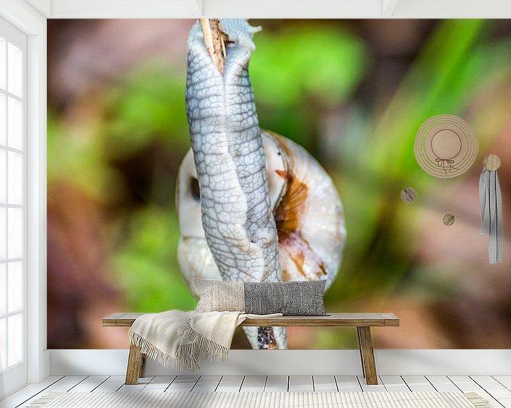 Sfeerimpressie behang: Een slak op een stokje van Barbara Koppe