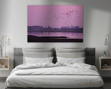 Dansende vogels boven het water von Leon Eikenaar