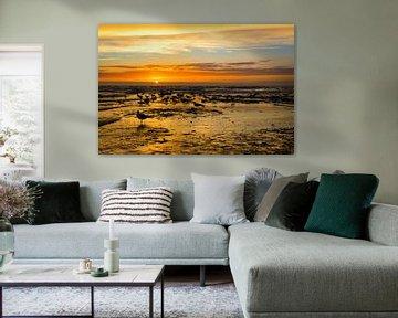 Möwen im Sonnenuntergang - Texel Paal 17 von Angela Dölling