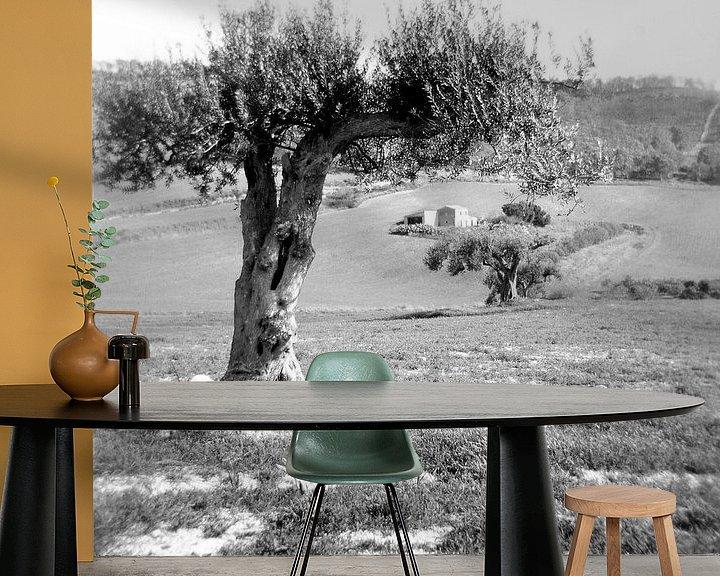 Sfeerimpressie behang: Olijfboom op Sicilie van Liesbeth Govers voor omdewest.com