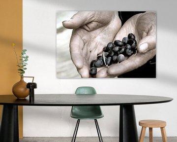 Olives, olijven, Italie, sfeer, food van Liesbeth Govers voor omdewest.com