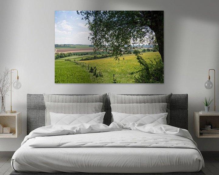 Sfeerimpressie: Nederlands heuvellandschap van Miranda van Hulst