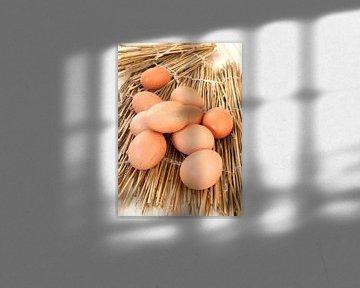 food0847 van Liesbeth Govers voor omdewest.com