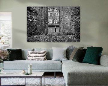 Dordrecht zicht op  Grote Kerk van Danny den Breejen
