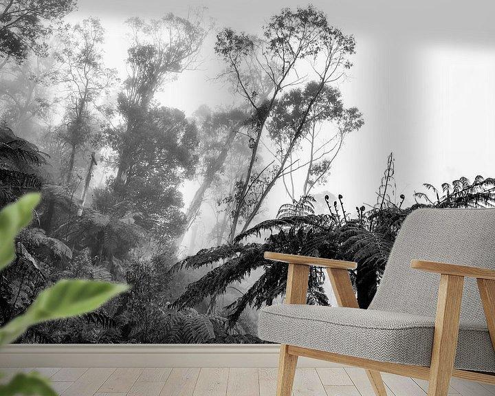 Beispiel fototapete: Regenwald im Nebel IX von Ines van Megen-Thijssen