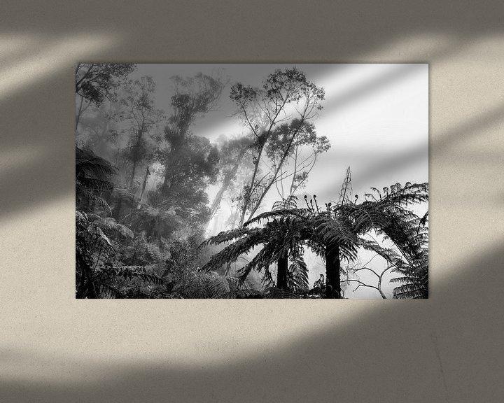 Beispiel: Regenwald im Nebel IX von Ines van Megen-Thijssen
