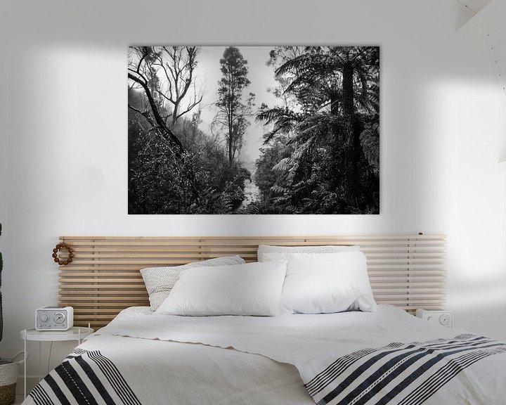 Beispiel: Regenwald im Nebel X von Ines van Megen-Thijssen