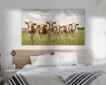 Die Kuh-Bande von Lars van de Goor