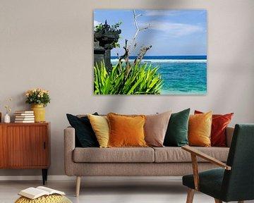 Het paradijs op Bali von Petra Brouwer