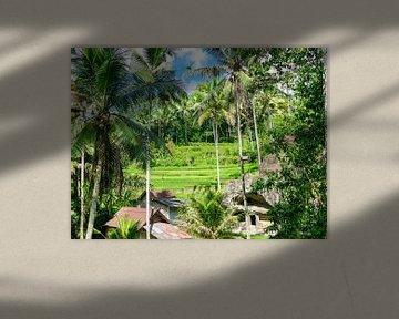 Het landschap bij de Kunung Kawi tempel von Petra Brouwer