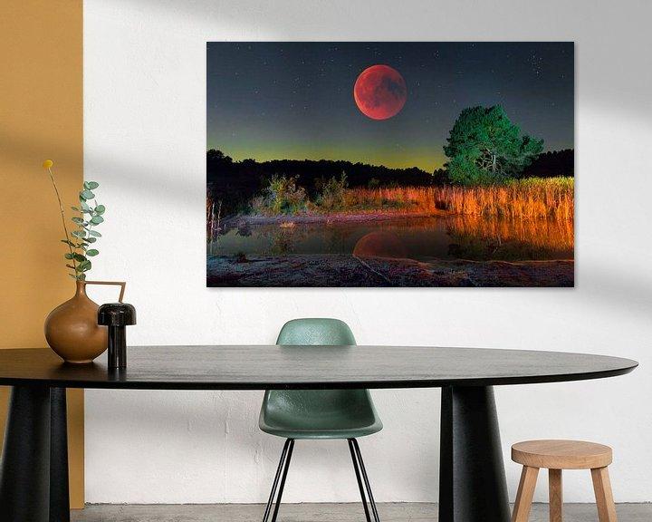 Sfeerimpressie: Rode maan over heide landschap van Jack van der Spoel
