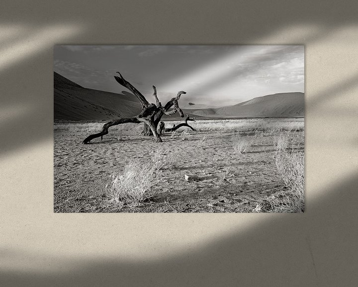 Sfeerimpressie: verstilde boom nabij dune 7 (Sosusvlei) in Namibië van Jan van Reij