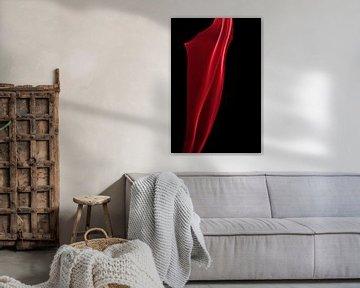 The curtain van Rian Verweijmeren