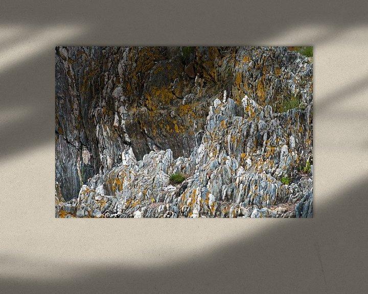 Sfeerimpressie: gele korstmossen op grijze steen van Hanneke Luit