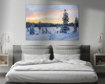 Pad door de sneeuw met mooie lucht in Fins Lapland van R.Phillipson
