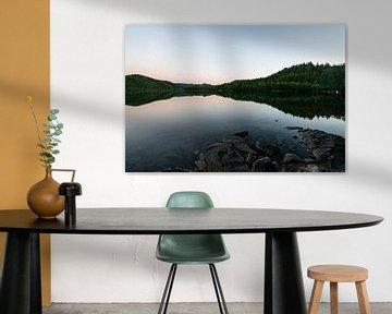 Reflectie van bomen in een meer in Noorwegen van Ellis Peeters