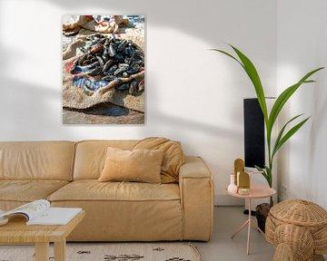 vis1771 van Liesbeth Govers voor omdewest.com