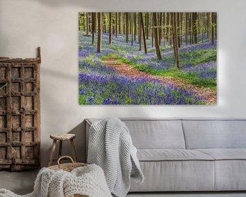 Im blauen Wald von Michael Valjak