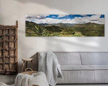 Colombiaanse Andes van Ronne Vinkx