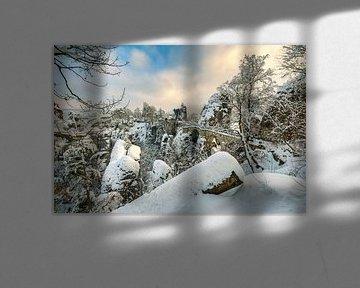Winter in Saxon Switzerland van Michael Valjak