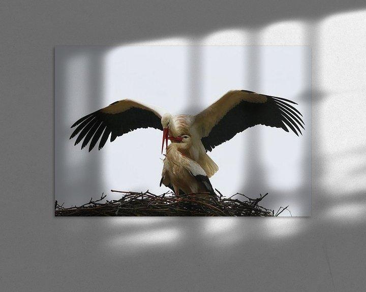 Sfeerimpressie: Vogel | Ooievaar van Larissa Bakker