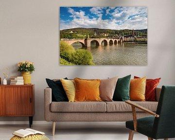 Heidelberg am Neckar von Michael Valjak