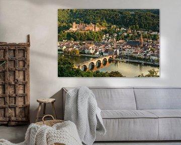 Die Altstadt von Heidelberg von Michael Valjak