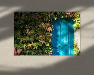 Deur buiten gebruik, Frankrijk van Floris van Woudenberg