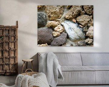 'Dolfijn in gesteente' van Erna Kampman