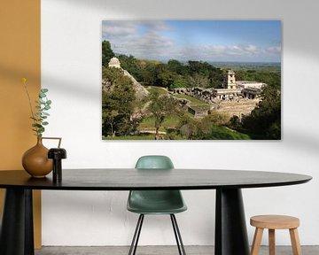 Palenque van Mr Greybeard