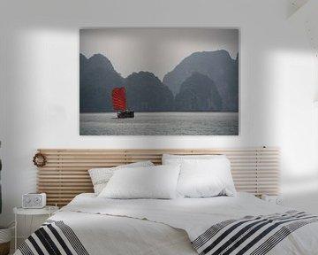 Rood zeil in Ha Long Bay van Mr Greybeard
