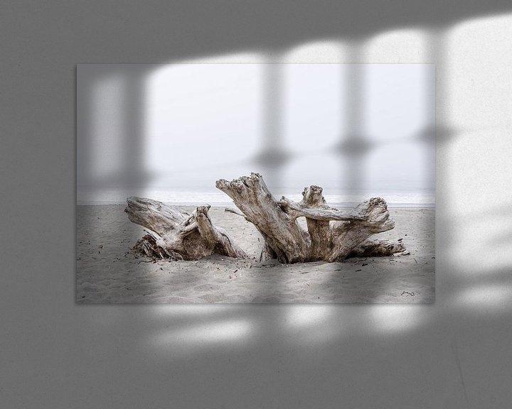 Sfeerimpressie: Drijfhout op het strand van Tony Buijse
