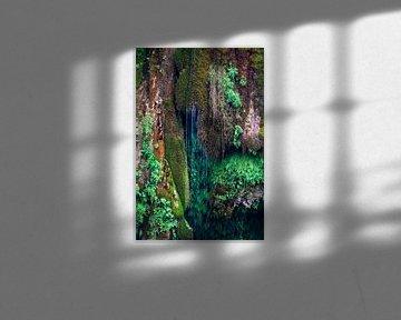 Natürlich grün von Anouschka Hendriks