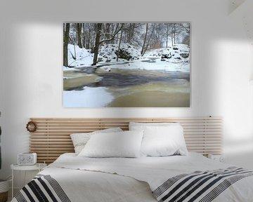Bevroren beek van Alex Roetemeijer