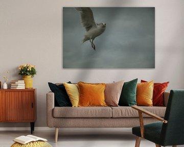 Bird, Interrupted van GeeeDeeeBeee