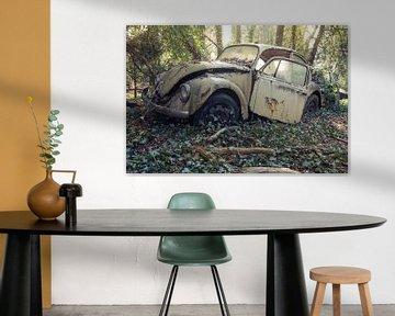 VW Bug van Kristof Ven