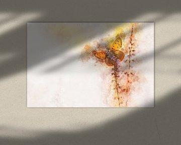 Vlinder 16 van Silvia Creemers