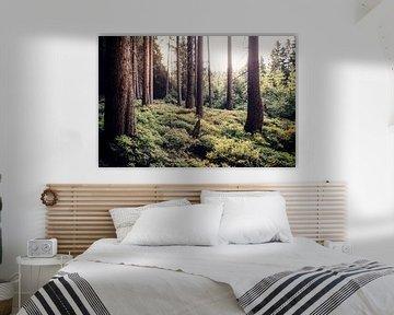 Idylle im Wald van Oliver Henze
