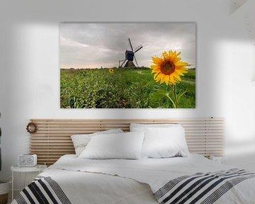 Gelbe Sonnenblume in einer niederländischen Polderlandschaft mit Mühle von Ruud Morijn
